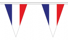 France Triangular Flag Bunting - 20m Long - 54 Flags